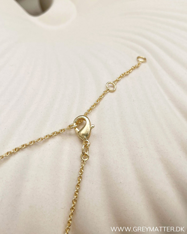 Big Golden Plated Necklace